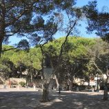 castelo-de-sao-jorge-007_1713968949_o