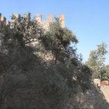 castelo-de-sao-jorge-024_1714008865_o