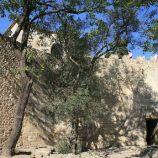 castelo-de-sao-jorge-028_1714863556_o