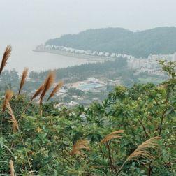 cultural-village-041_435571160_o