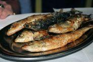 dona-branca---sardines-003_3943354227_o