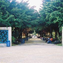 dr-carlos-dassumpcao-park-006_60981000_o
