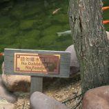 fish-pond-fishermans-wharf-001_2048531015_o