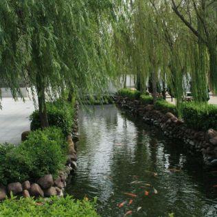 fish-pond-fishermans-wharf-002_2049317334_o