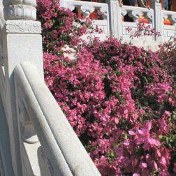 hong-kong---day-2-po-lin-monastery-0016_3022042014_o