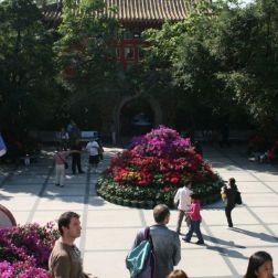 hong-kong---day-2-po-lin-monastery-0032_3022044240_o