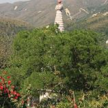 hong-kong---day-2-tian-tan-buddha-0007_3021214809_o
