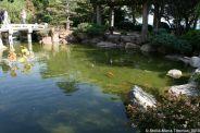 japanese-garden-monte-carlo-october-2010-004_5092149211_o
