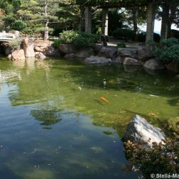 japanese-garden-monte-carlo-october-2010-004_5092149211_o