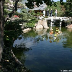 japanese-garden-monte-carlo-october-2010-005_5092149475_o