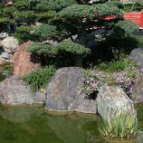 japanese-garden-monte-carlo-october-2010-010_5092747322_o