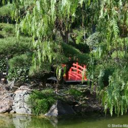 japanese-garden-monte-carlo-october-2010-013_5092151943_o
