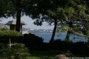 japanese-garden-monte-carlo-october-2010-024_5092154453_o