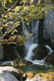 japanese-garden-monte-carlo-october-2010-027_5092751476_o