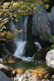 japanese-garden-monte-carlo-october-2010-028_5092751798_o