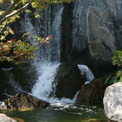 japanese-garden-monte-carlo-october-2010-028_5092751798_o