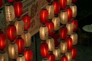japanese-lanterns-001_303406087_o