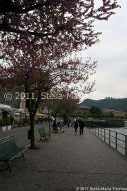 lake-como-001_5630954639_o