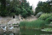 le-manoir-aux-quat-saisons-018_3717528001_o