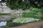 le-manoir-aux-quat-saisons-020_3717528503_o