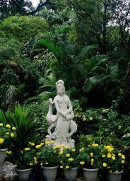 lou-lim-ioc-garden-015_60981952_o