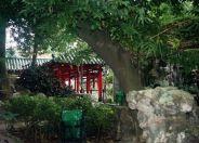 lou-lim-ioc-garden-016_60981963_o