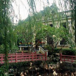 lou-lim-ioc-garden-017_60981978_o