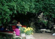 lou-lim-ioc-garden-019_60982766_o