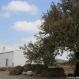 milreu-roman-ruins-058_3944982262_o