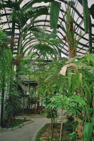 mong-ha-gardens-008_71707688_o