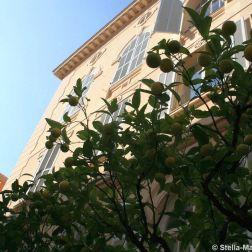 monte-carlo-october-2010-098_5092202325_o