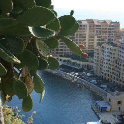 monte-carlo-october-2010-126_5092804226_o
