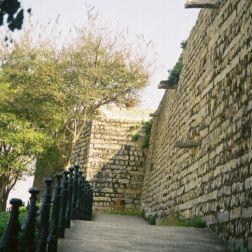 monte-fort-gardens-007_60983977_o