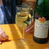 mosel-from-traben-trarbach-to-zeltingen-rachtig-001_3617434809_o