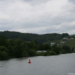 mosel-from-traben-trarbach-to-zeltingen-rachtig-015_3617442555_o