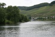 mosel-from-traben-trarbach-to-zeltingen-rachtig-016_3618262944_o