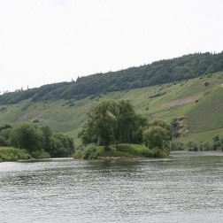 mosel-from-traben-trarbach-to-zeltingen-rachtig-017_3618263338_o
