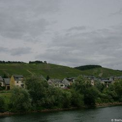 mosel-from-traben-trarbach-to-zeltingen-rachtig-018_3617443785_o