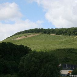 mosel-from-zeltingen-rachtig-to-traben-trarbach-021_3618273714_o