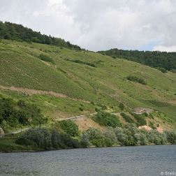 mosel-from-zeltingen-rachtig-to-traben-trarbach-024_3617455017_o