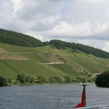mosel-from-zeltingen-rachtig-to-traben-trarbach-025_3617455341_o