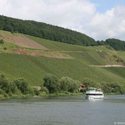 mosel-from-zeltingen-rachtig-to-traben-trarbach-030_3617457039_o