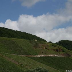 mosel-from-zeltingen-rachtig-to-traben-trarbach-034_3618278906_o