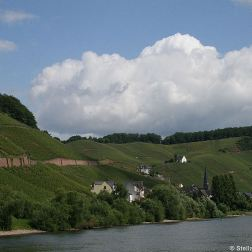 mosel-from-zeltingen-rachtig-to-traben-trarbach-037_3617460631_o