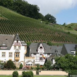 mosel-from-zeltingen-rachtig-to-traben-trarbach-043_3617464067_o