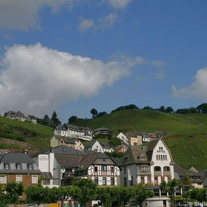 mosel-from-zeltingen-rachtig-to-traben-trarbach-046_3617465315_o