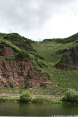 mosel-from-zeltingen-rachtig-to-traben-trarbach-058_3617471415_o