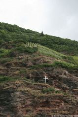 mosel-from-zeltingen-rachtig-to-traben-trarbach-063_3618294240_o