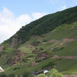 mosel-from-zeltingen-rachtig-to-traben-trarbach-066_3617474669_o