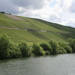 mosel-from-zeltingen-rachtig-to-traben-trarbach-070_3617476219_o